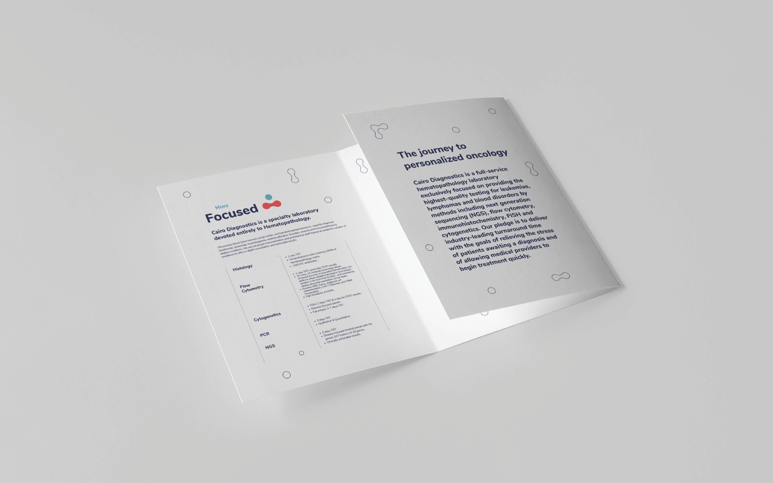 Cairo Diagnostics Branding